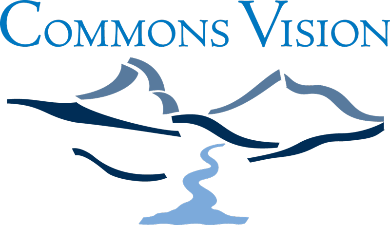 Commons Vision